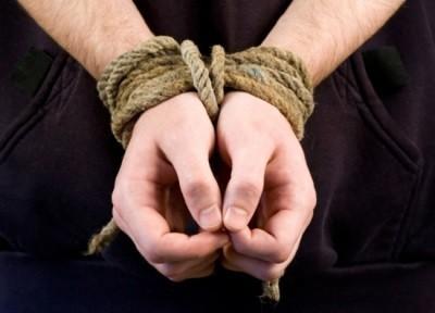 Понятие похищения