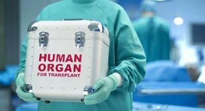 Принуждение к трансплантации
