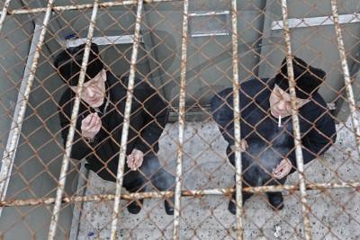 Изображение - Статья пожизненное лишение свободы 15-400x267